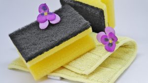 A sponge and flowers